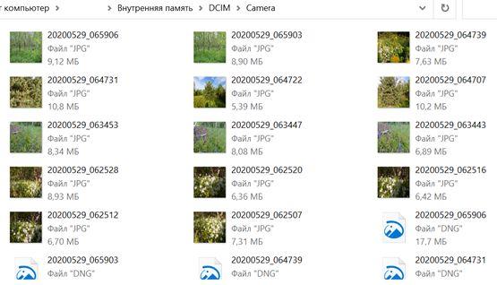 Фотографии в папка смартфона LG