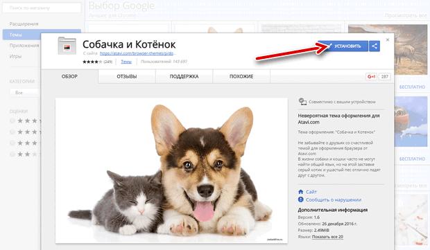 Выбор темы оформления в магазине Google Chrome