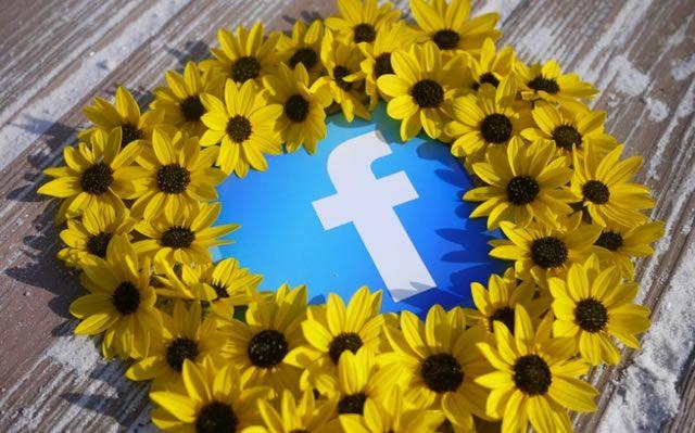 Символ социальной сети Facebook в окружении желтых цветов