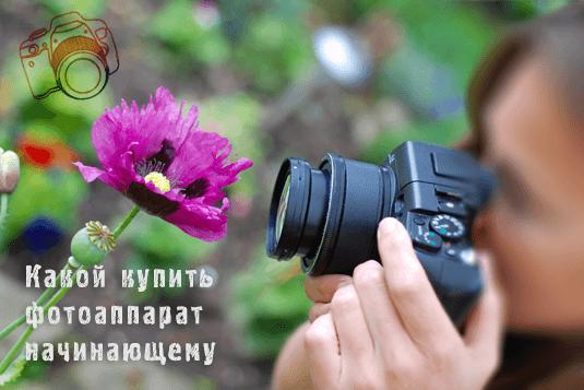 какой фотоаппарат купить начинающему фотографу