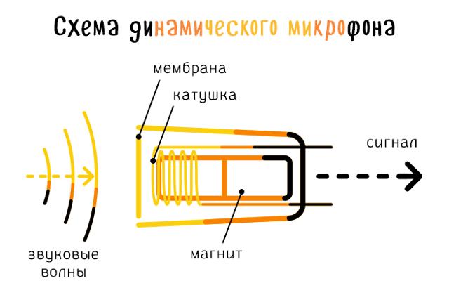 Схема стандартного динамического микрофона