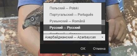 Выбор языка для автоматического перевода субтитров на YouTube