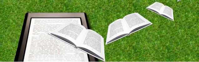 Электронные книги будут именными