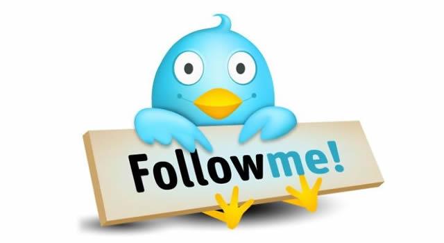 Птичка Twitter с табличкой Follow Me!