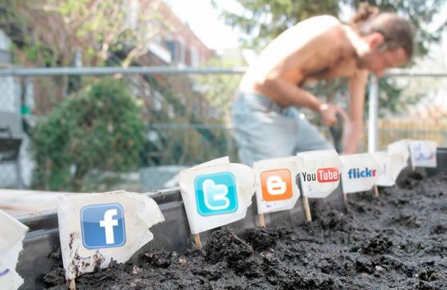 Социальные медиа – чего ждут пользователи от бизнеса