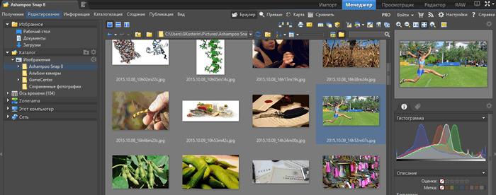Окно менеджера просмотра фотографий в программе Zoner Photo Studio