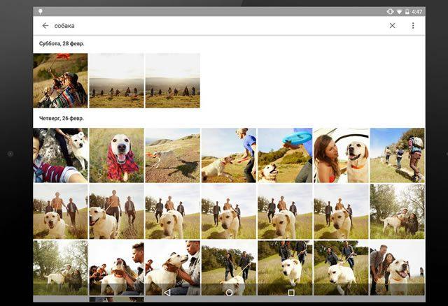 Основной режим просмотра в приложении Google Photos