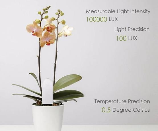 Использование датчика для контроля почвы в цветочном горшке